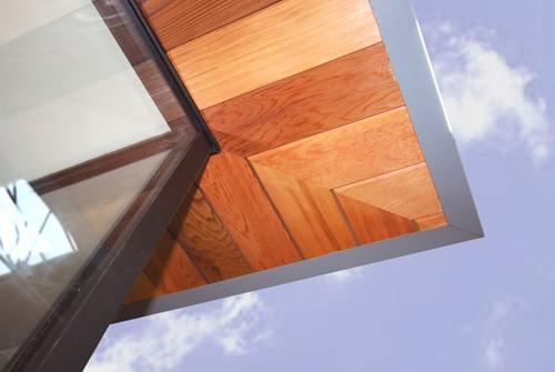canopy close up 2